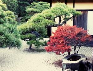 jardi zen